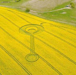 Cherhill Crop Circle